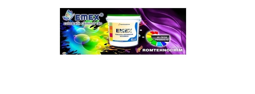 Tencuiala Decorativa Siliconica EMEX 2