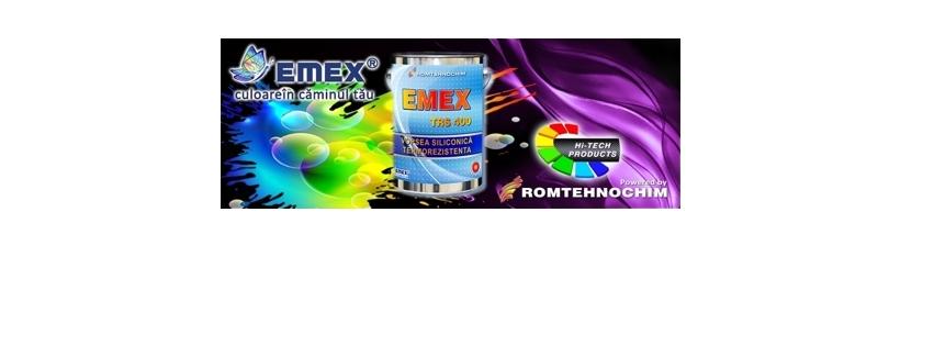 Vopsea Termorezistenta Siliconica EMEX TRS 400 2