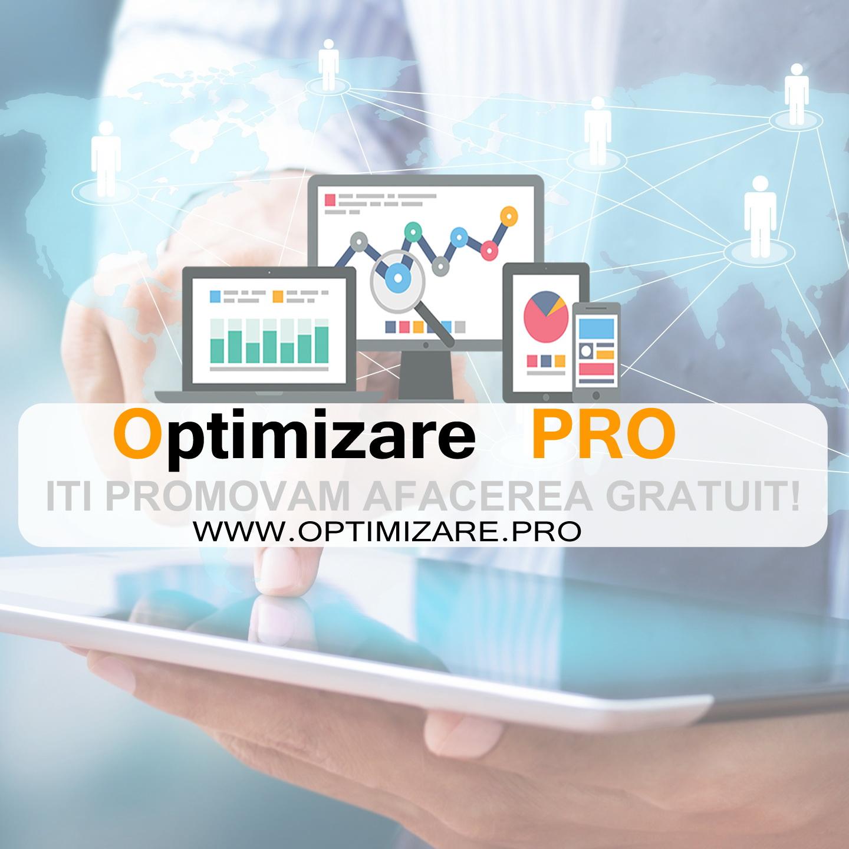Importanta Promovarii Online in Directoarele Web din Romania 11