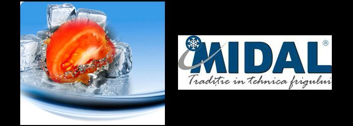comercializarea, proiectarea, instalarea, punerea in functiune si mentenanta echipamentelor frigorifice precum si comercializarea agentilor refrigeranti.