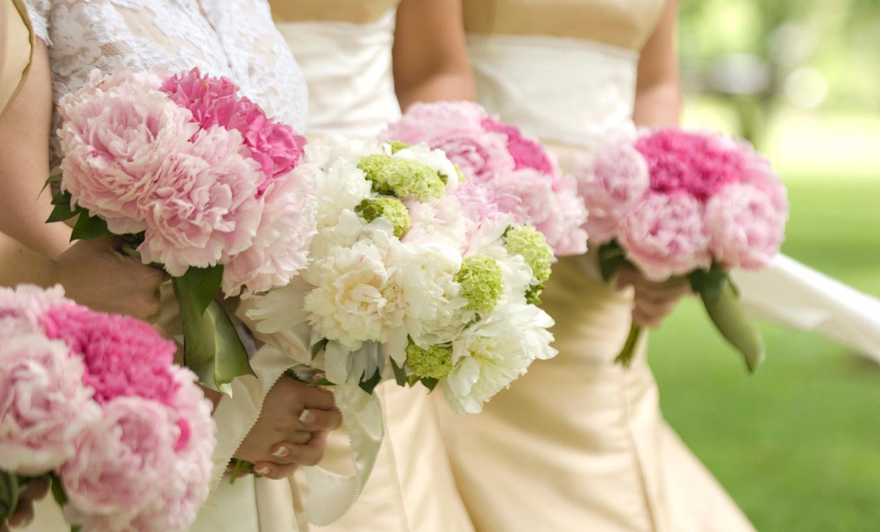 Alege echipa CKfoto - Fotograf profesionist pentru nunti si botezuri