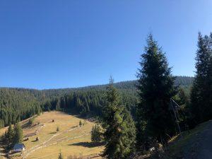 Anul acesta opteaza pentru cazare in muntii Apuseni 1