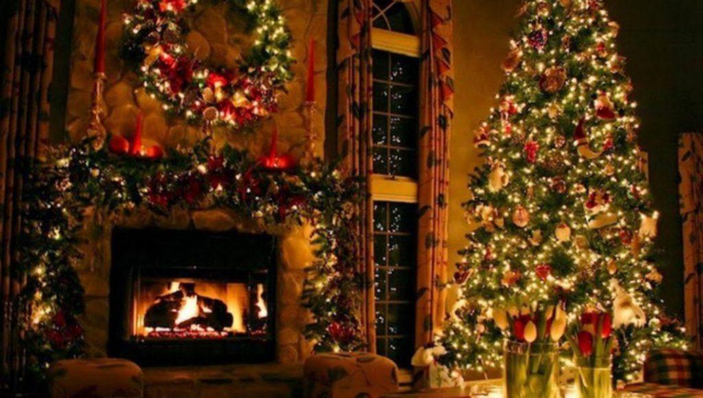 Am cumpărat de la BraziCrăciun.net brazi minunați pentru decorul de sărbători